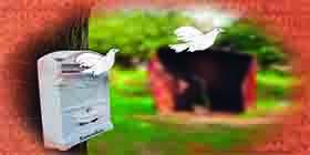 Tolerancia XXIV Premio: Maite Pagazaurtundua